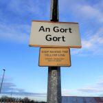 Abrindo caminhos: a rota de imigração de centenas de brasileiros para Gort, na Irlanda